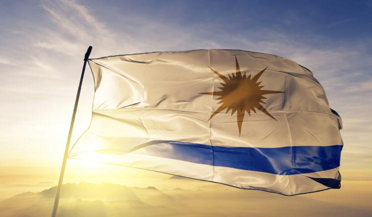Energia Solar Em Palmas: 5 Razões Para Ter Um Telhado Solar